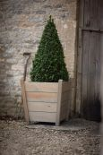 Kingham Large Wooden Planter