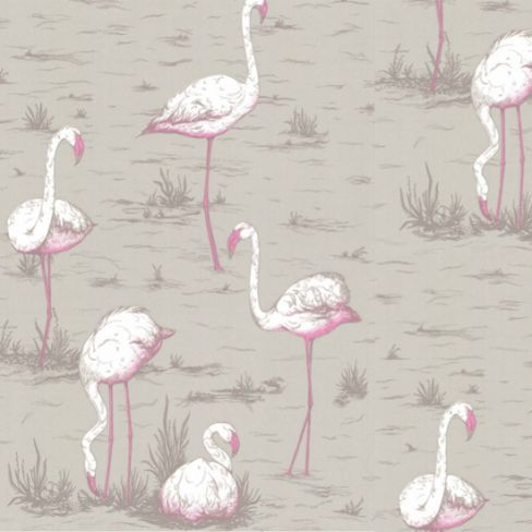 Flamingos by Cole & Son