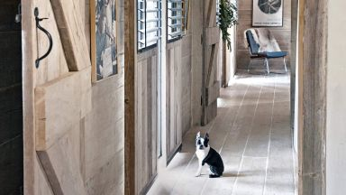 Wood-clad hallway with salvaged boards and cute Boston terrier