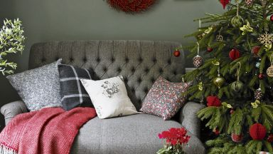 Green Country Living Room with Red Christmas Decorations