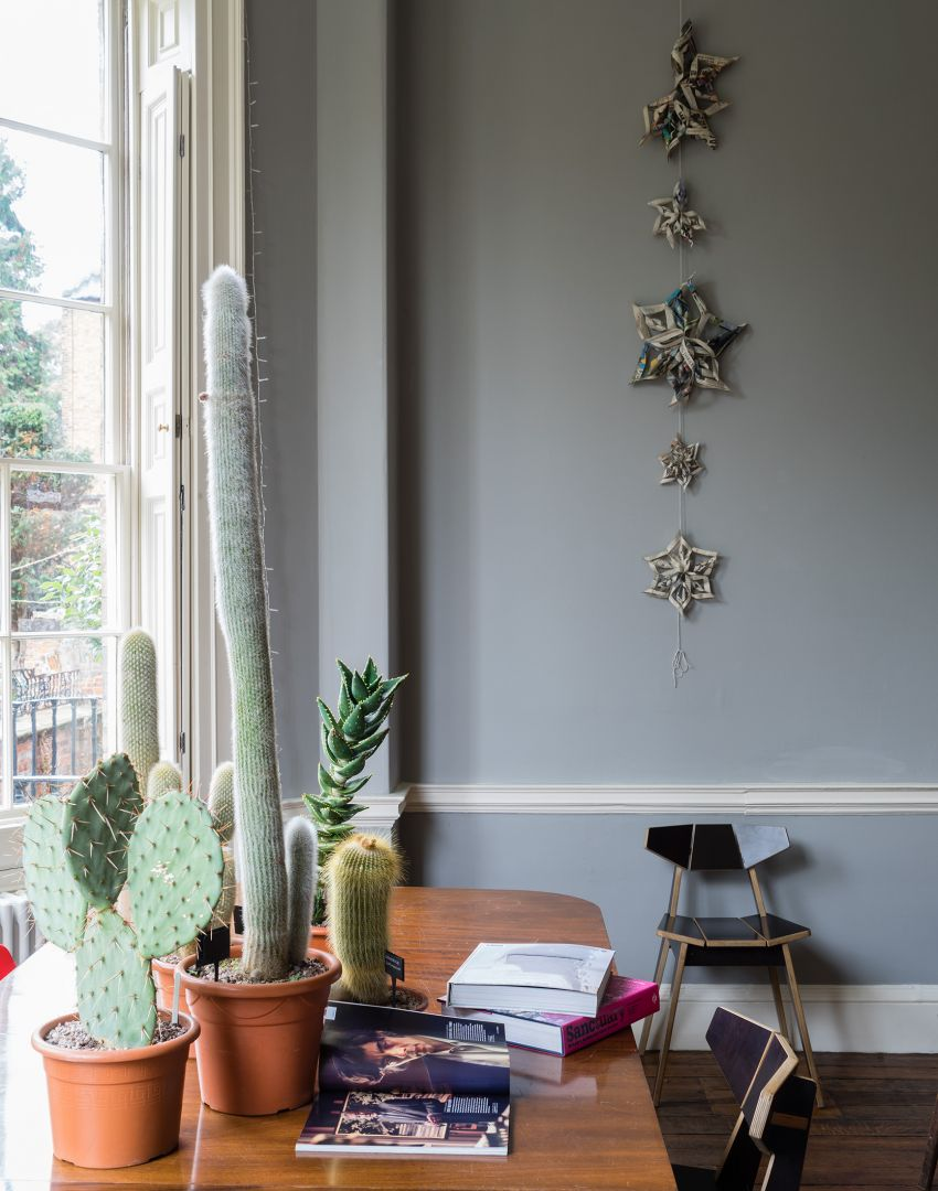 Grey Home Office with Wooden Desk and a Selection of Cacti